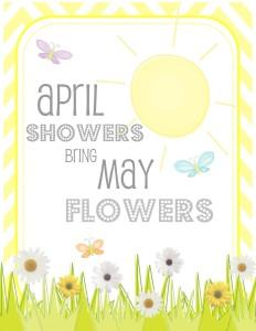 COM april showers 8x10