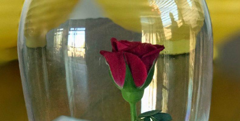 МК: роза для Красавицы