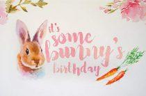 Я счастливей всех девчонок: у меня живет крольчонок!