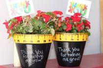 Что подарить на День учителя: 25 идей