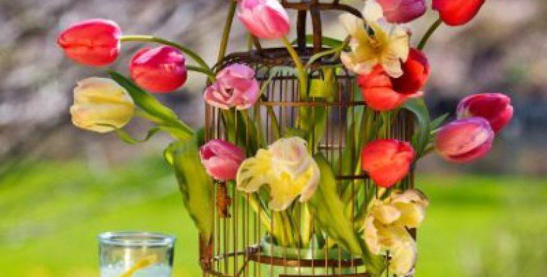 40 способов поставить цветы в вазу