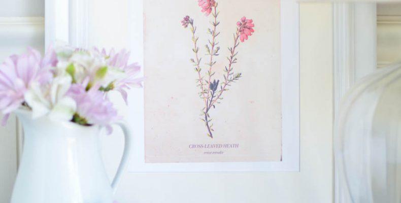 Винтажные постеры: скачать и распечатать