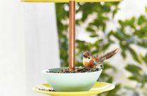 Как привлечь птиц и бабочек в свой сад